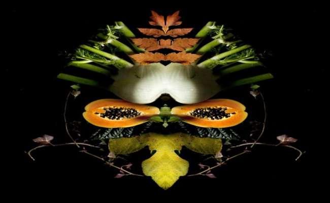 Вегетарианские тотемы
